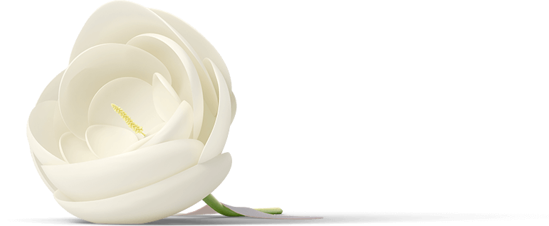 flower-2.png